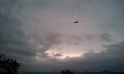 JAL B777-246 JL124@RWY14Rエンド脇再開発地区(by W41H)