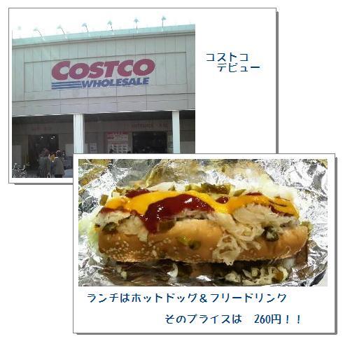cos1.jpg