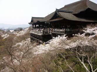2008.4.5 京都で花見 021