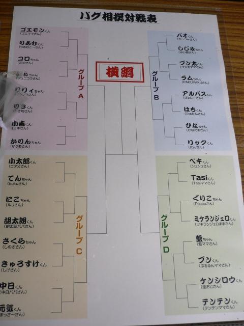 パグ相撲対戦表