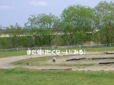 FC2-264a.jpg