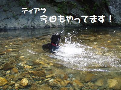 P7120049-8.jpg