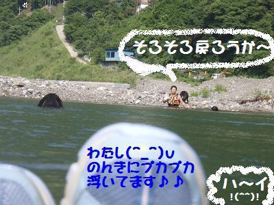 P7120150-0.jpg
