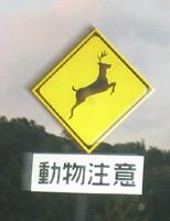 鹿-動物標識