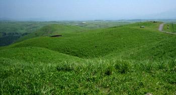 阿蘇 草原