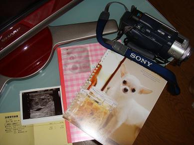 出産・育児ノート