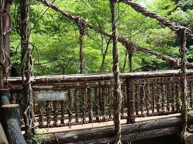 猿のかずら橋