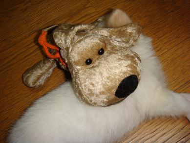 アミチャン 犬のおもちゃ