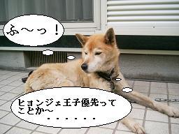 nonchel 006 - コピー
