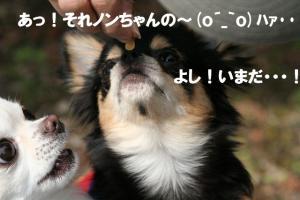 IMG_7719.jpg
