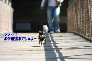 IMG_8396.jpg