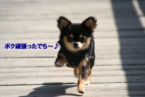 IMG_8403.jpg