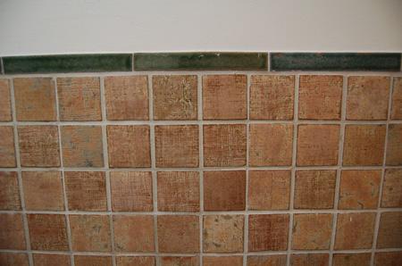 芝川ビル トイレのタイル