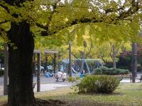 秋の芝公園①
