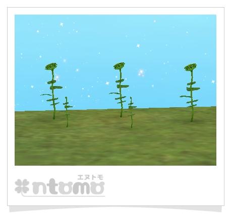 未完成の向日葵