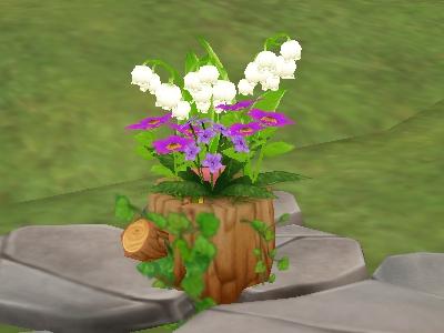 三井さん宅の寄せ植え鉢