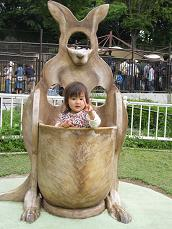 2008.5 多摩動物園・カンガルー