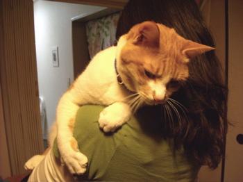 抱っこ大好き2