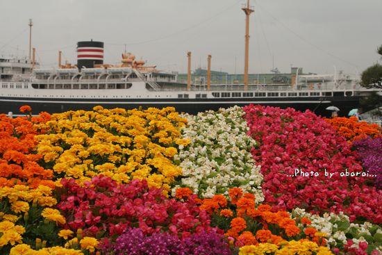 氷川丸と花