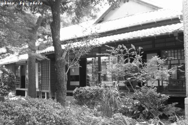 夏目漱石記念館 033