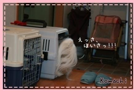 2008_0625_073543AA.jpg
