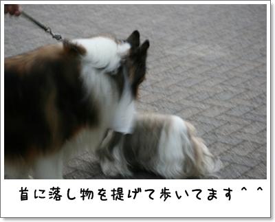 2008_0628_183547AA.jpg