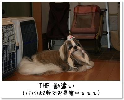2008_0629_163900AA.jpg