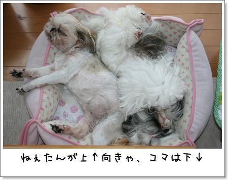 2008_0706_094338AA.jpg