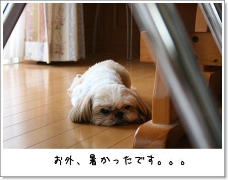 2008_0719_091454AA.jpg