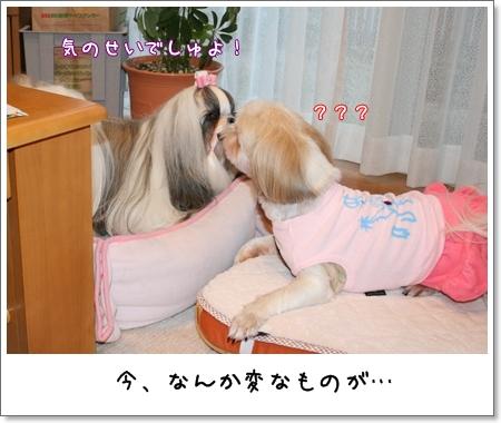 2008_0719_183318AA.jpg