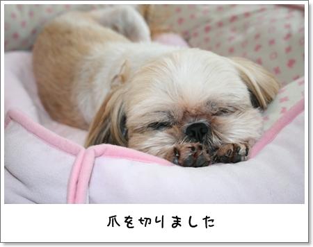 2008_0721_101438AA.jpg