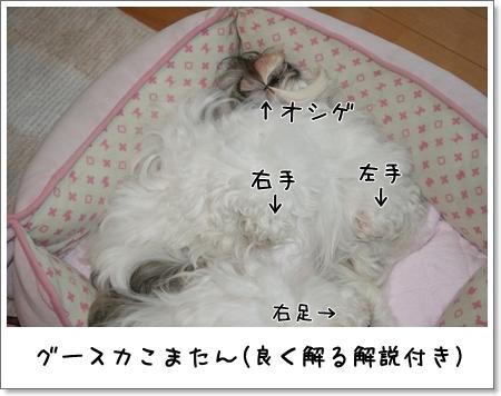 2008_0722_062804AA.jpg