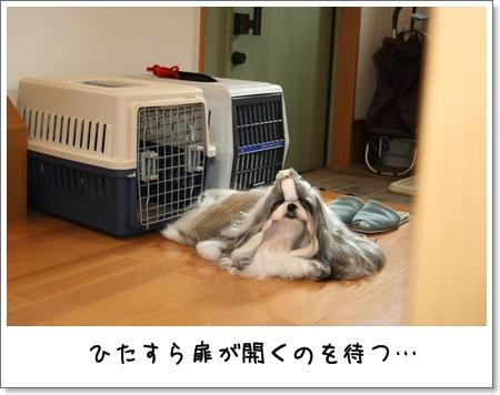 2008_0722_073420AA.jpg