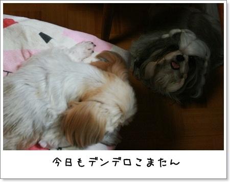 2008_0724_190329AA.jpg