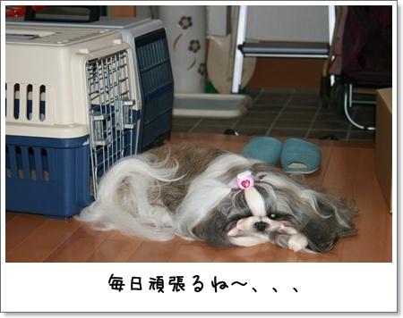 2008_0725_074255AA.jpg