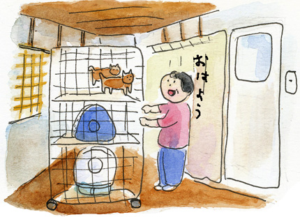 猫小屋1-1