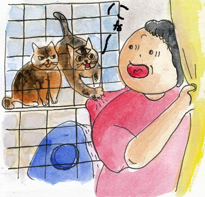 猫小屋1-3