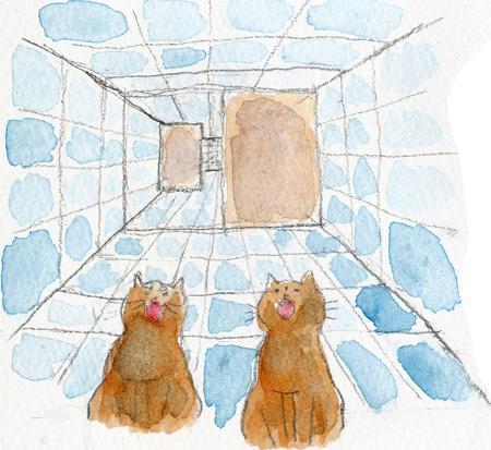 猫はしご1