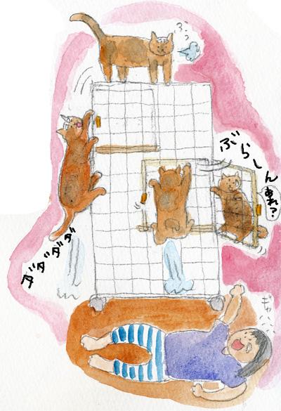 猫はしご3