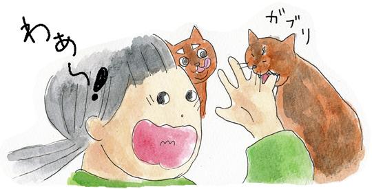猫の好物3
