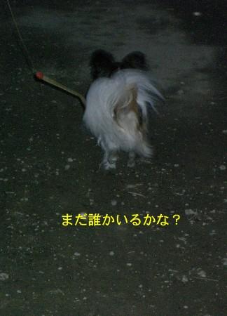 10いないと思うよ(^^;