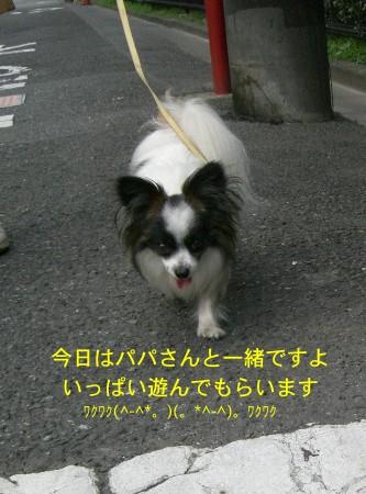 1嬉しそうだね(^^)