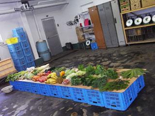 大高酵素野菜
