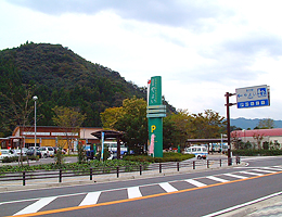 miti_yayo2.jpg