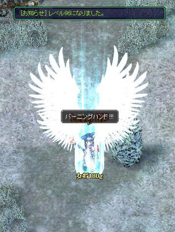 1202_2A5F.jpg