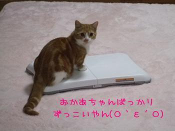 2008_04070049.jpg