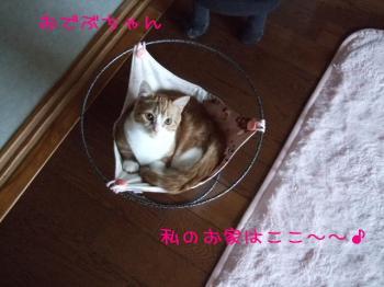 2008_04090001.jpg