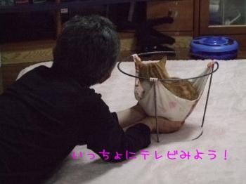 2008_04230004.jpg