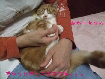 2008_04250002.jpg