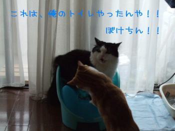 2008_05040221.jpg